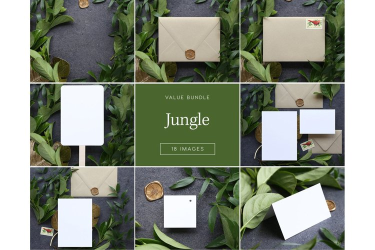 Jungle Bundle - 18 Images