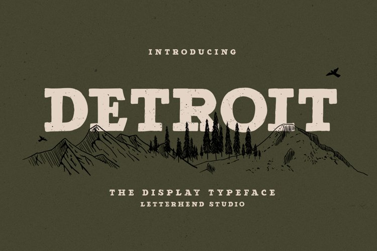 Detroit - Slab Serif Typeface example image 1
