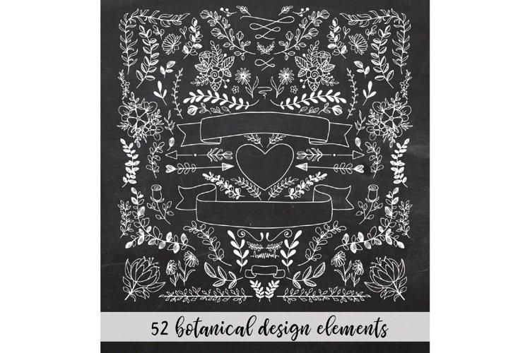 Hand drawn chalk design elements - white botanical clipart
