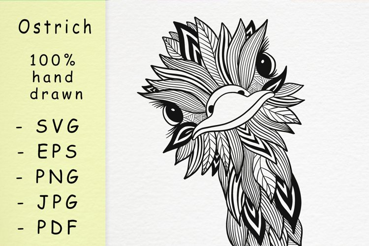 Hand drawn Ostrich with patterns