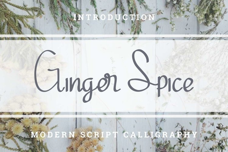 Ginger Spice example image 1