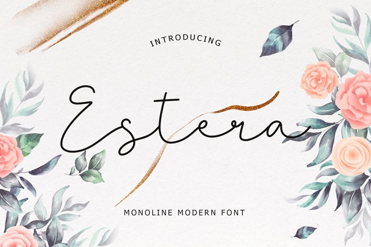 Estera Monoline Modern Font example image 1