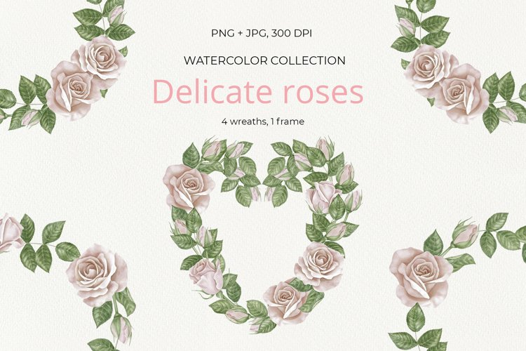 Delicate roses example image 1