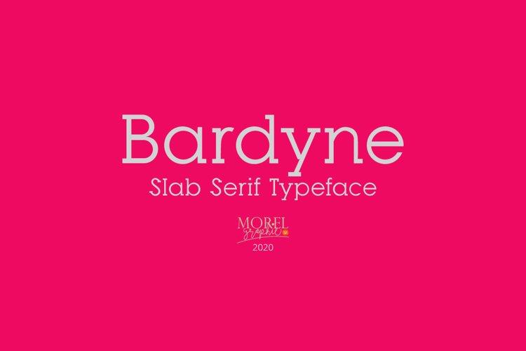 Bardyne example image 1