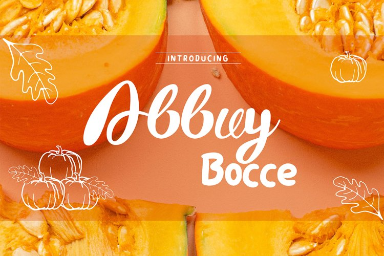 ABBUY and BOCCE _ Font Duo Letters with Handwriting example image 1