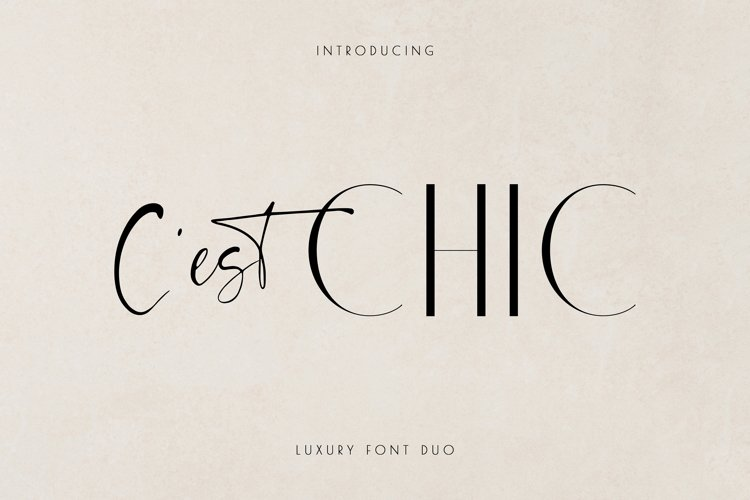 Chic Luxury Font Duo example image 1
