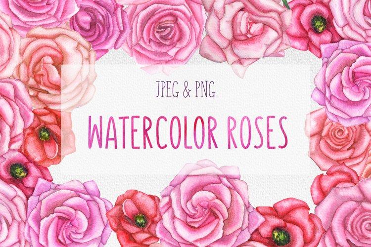 Watercolor set of hand-drawn roses