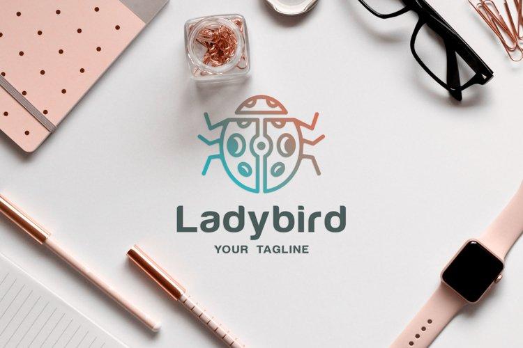 Insect animal logo design of ladybug or ladybird