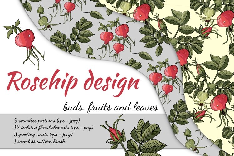 Design with buds, leaves and fruits of rose hip. example image 1