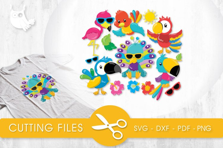 Tropical Birds cutting files svg, dxf, pdf, eps included - cut files for cricut and silhouette - Cutting Files SG example image 1