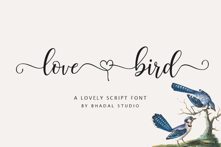 Love Bird - lovely script font example image 1