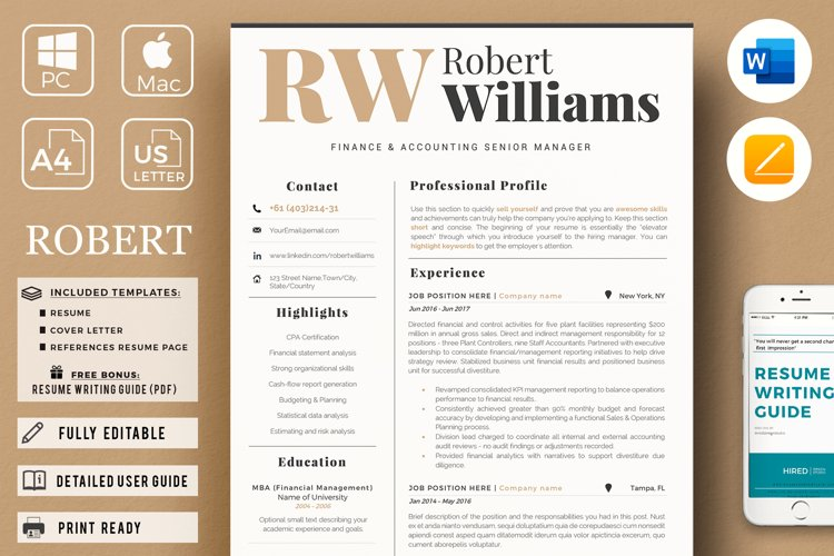 3 Page Professional Resume. Accountant Sales Resume, CV example image 1