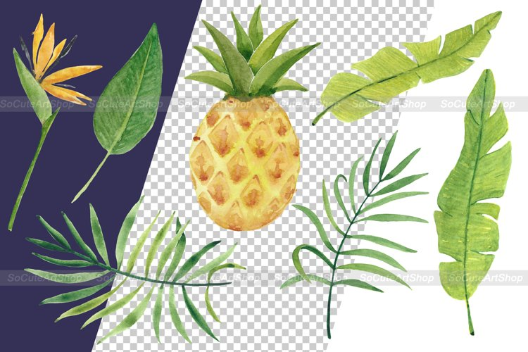 Watercolor Luau party PNG clipart, summer beach clipart example 4