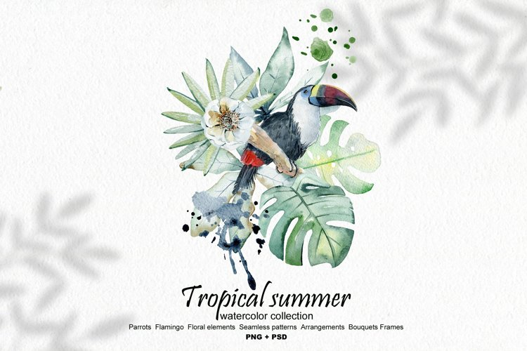 Tropical summer. Watercolor set. example image 1