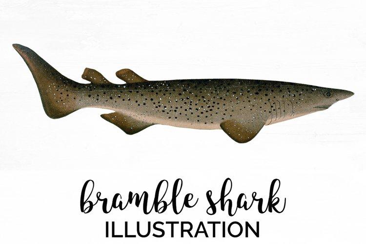 Shark - Vintage Animals Bramble Shark example image 1