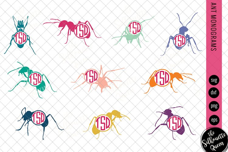 Ant Svg, Ant Monogram Svg, Circle Frames, Cuttable Design, C example image 1