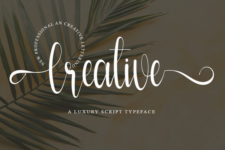 Creative - Modern Script Font example image 1