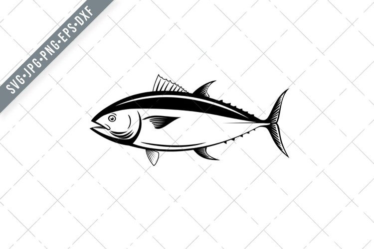 Atlantic Bluefin Tuna or Northern Bluefin Tuna SVG example image 1