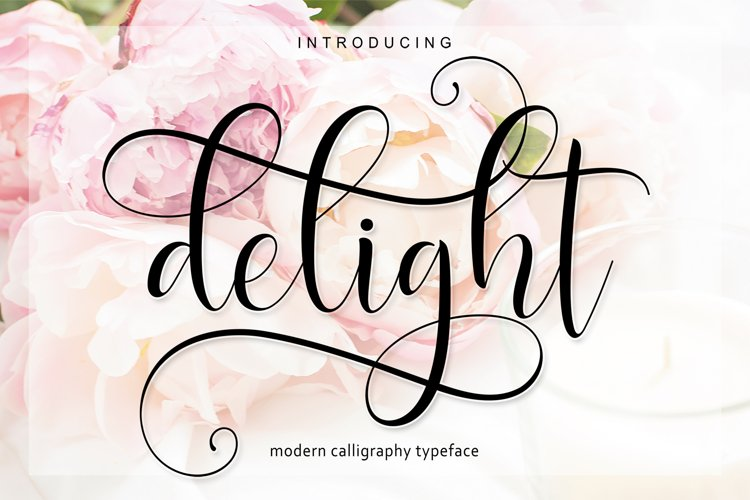 Delight Script | WEB FONT example image 1