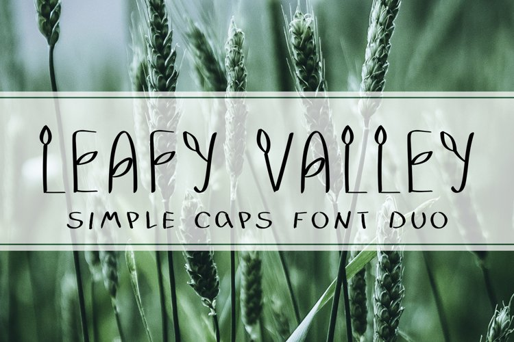 LEAFY VALLEY - Hand-drawn Font DUO
