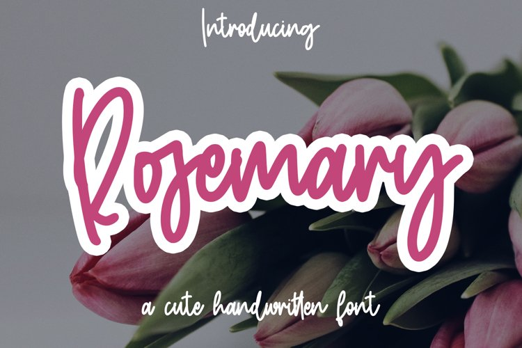 Rosemary - Cute Handwritten font example image 1