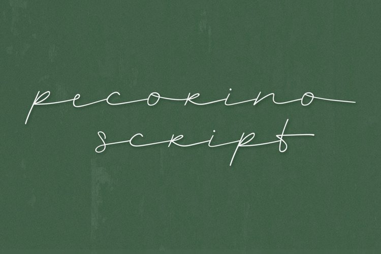 Pecorino Script