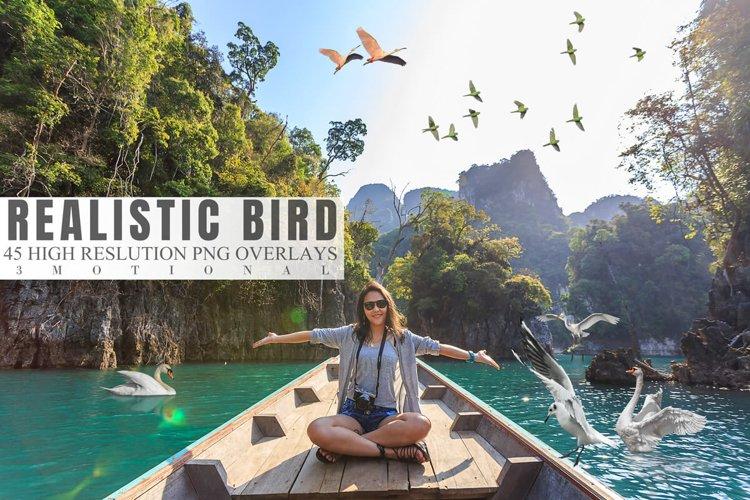 45 Realistic Bird Overlays example image 1