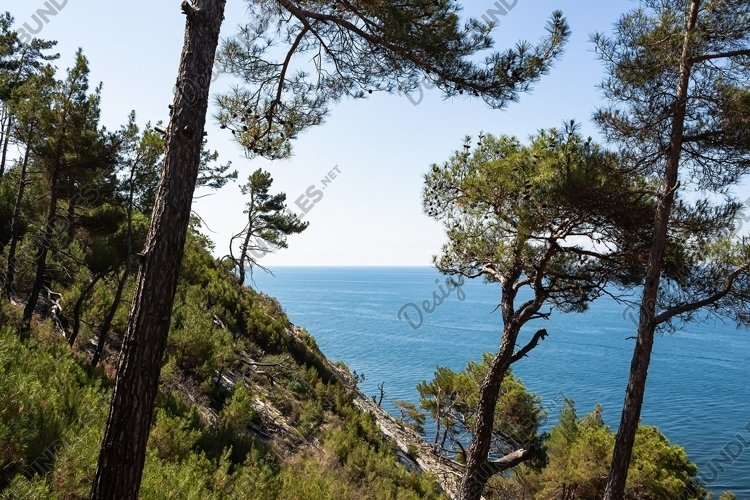 Hiking and view of the forest, rocks and sea coast. 2pcs example image 1