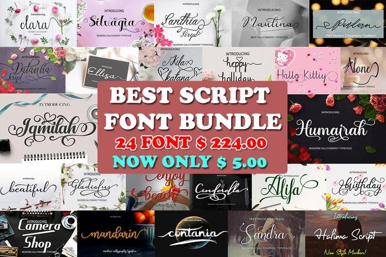 Best Script Font Bundle example image 1