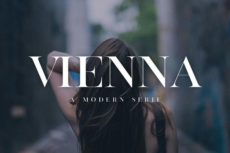 Vienna   Modern Serif Font example image 1