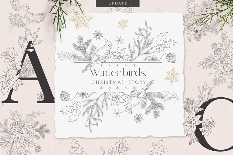 Winter birds. Christmas Story. example image 1