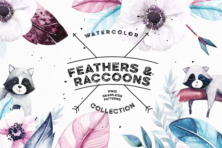 Watercolor Feathers & Raccoons