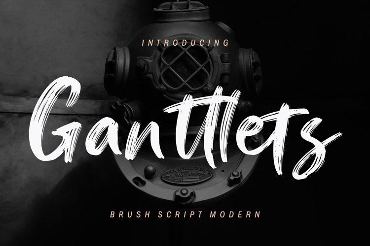 Ganttlets Brush Script example image 1