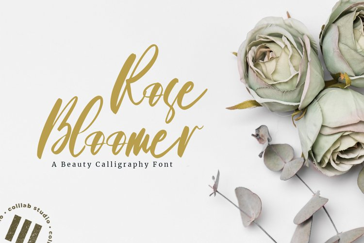 Roses Bloomer - A beauty Calligraphy Font example image 1