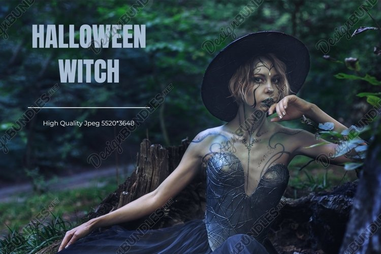 Halloween Witch in a dark magic forest.