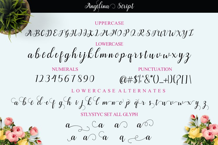 Angelina Script example 10
