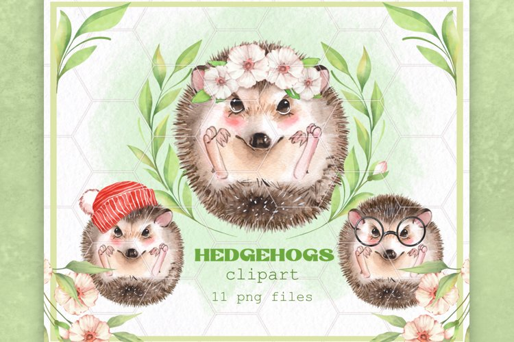 Watercolor hedgehogs example image 1
