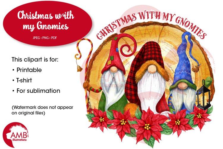 Christmas gnomes, Buffalo plaid Gnomes clipart