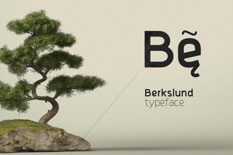 Berkslund example image 1