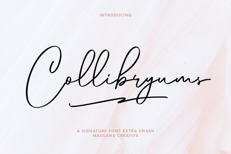 Collibryums Signature Font Extra Swash example image 1