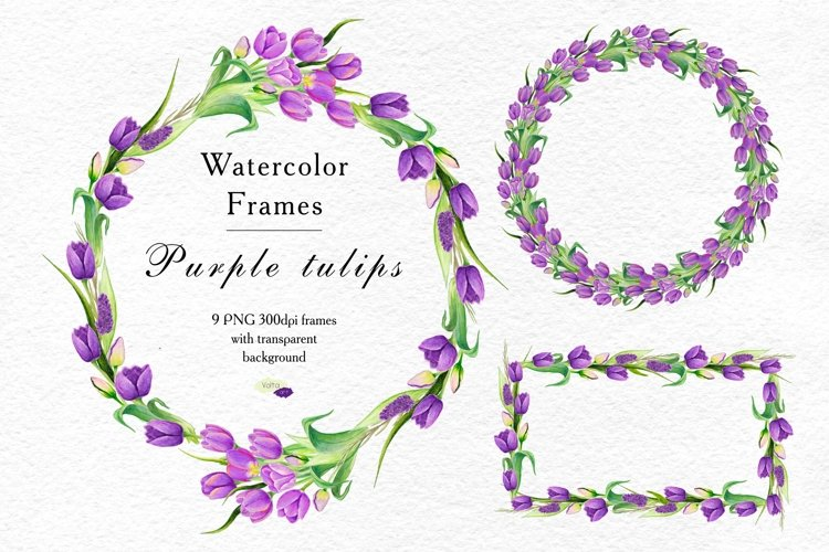 Tulips frames and wreathes, Purple PNG Watercolor clipart example image 1
