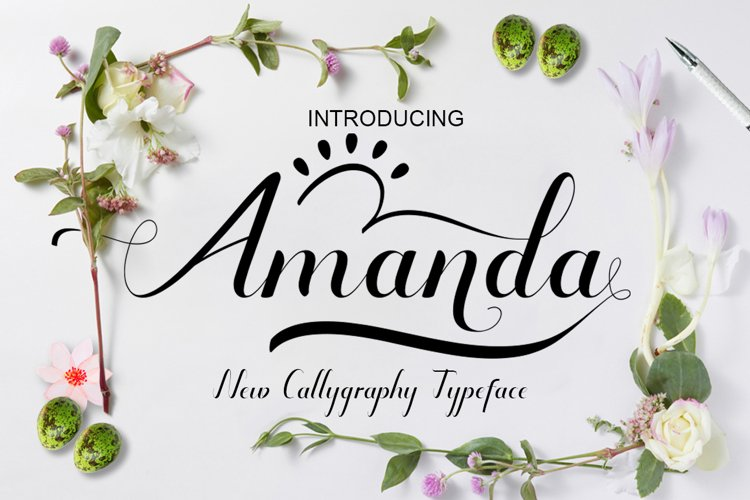 Amanda+bonus example image 1