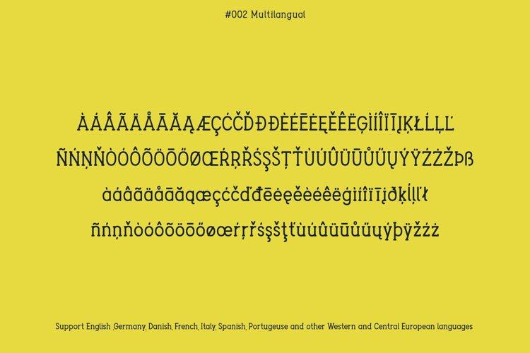 Berry Typeface example 2
