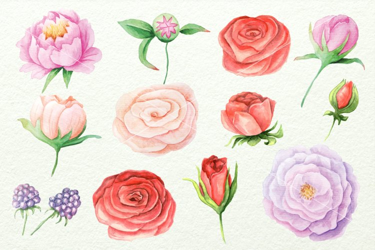 Watercolor Floral DIY Set - Free Design of The Week Design1