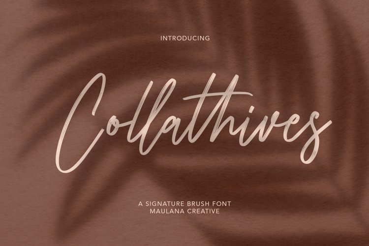 Collathives Signature Brush Font example image 1