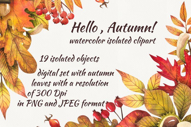 Watercolor autumn leaves, clipart example image 1