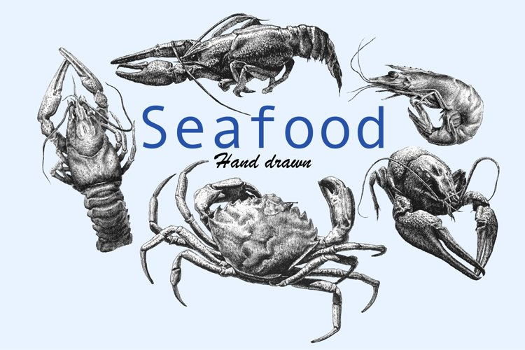 Seafood. Hand drawn. example image 1