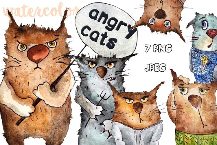 Emotional cats drawings watercolors