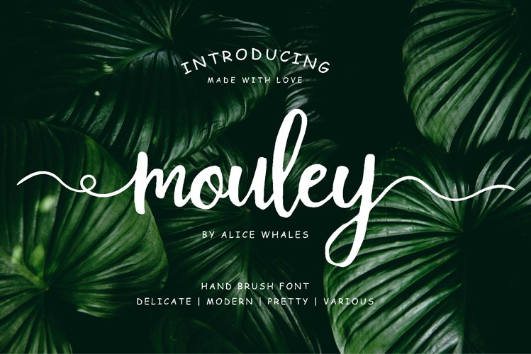 Mouley - lovely script brush example image 1