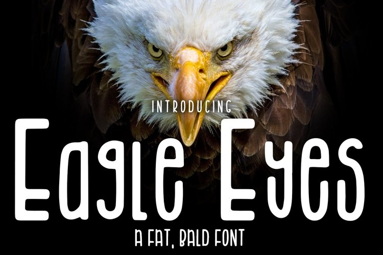 Web Font Eagle Eyes example image 1